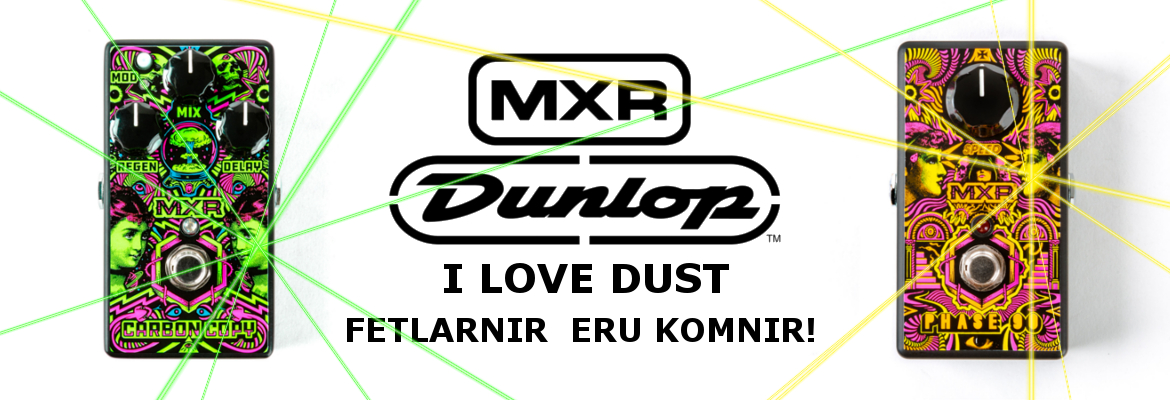 ilovedustbanner